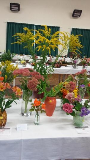 flowers perennials